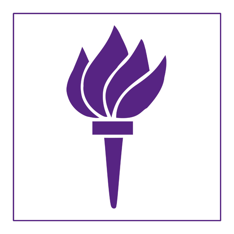 NYU Torch