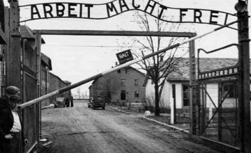 The holocaust research paper